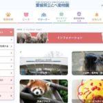 愛媛県立とべ動物園の割引券はある?コンビニの前売り券やJAFクーポンをチェック!