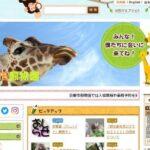 京都市動物園の料金を割引するには?JAFクーポンと学生割引や得する駐車場の使い方についても