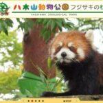 八木山動物公園の料金を割引・無料にする方法!ズーパラダイス八木山をお得に楽しもう