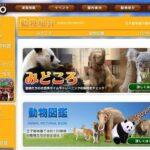 神戸市立王子動物園の料金を割引や無料にするには?JAFクーポンやコンビニ前売り券についても